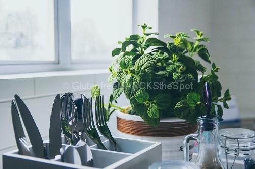 gluten-free kitchen items with herbs