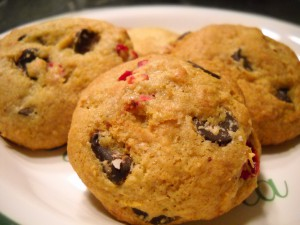 Gluten-free chocolate cranberry holiday cookies