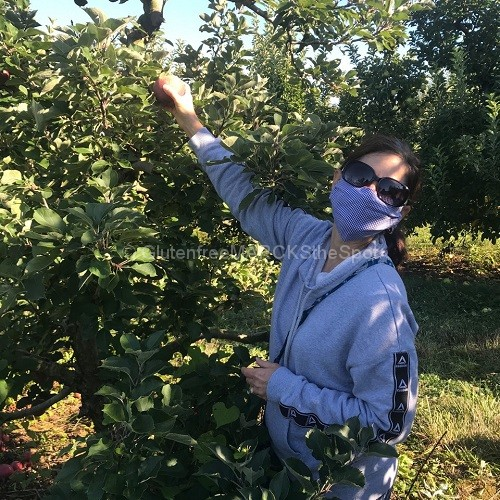 picking fresh gluten-free apples